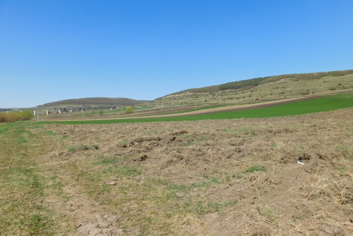 3750 m² land, in Valcela, 12 km from Cluj, ideal for a cottage 1